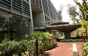 Biblioteca Josè Vascocelos: vista dal giardino ad Est ( image source: www.bibliotecavasconcelos.gob.mx )