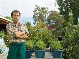 Alberi da giardino: vivaista