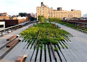 Immagine del parco pubblico della High Line ( image source: www.dsrny.com )