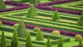 Cos'è e come creare un giardino all'italiana