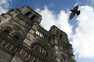 Parigi Notre Dame, foto arch.Pezzella Monica