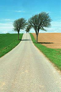 Terreni ai margini della strada