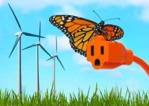 Energia pulita dall'eolico