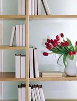 Acerbis International: libreria Cambridge particolare