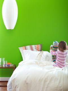 MoniColour: PARETI color.....VIOLA,VERDE,BLU,GIALLO,ROSSO