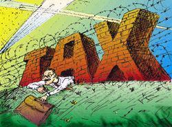 Il peso delle tasse