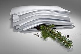 Carta e rami: ecologia