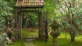 Camminamenti giardino