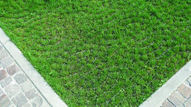 Sistemi per il prato carrabile - Quando seminare erba giardino ...