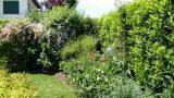 Quinte verdi per il giardino