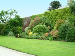 Quinte verdi per il giardino - Recinzioni giardini privati ...