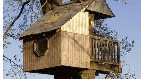 Legno progetti e tecniche fai da te - Casa sull albero da costruire ...