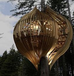 Casa sull 39 albero for Case in legno sugli alberi