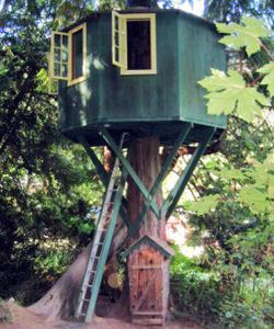 Casa sull'albero: fase finale