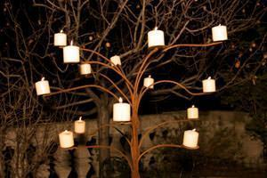 albero notte di Lucingiardino in tondini di ferro