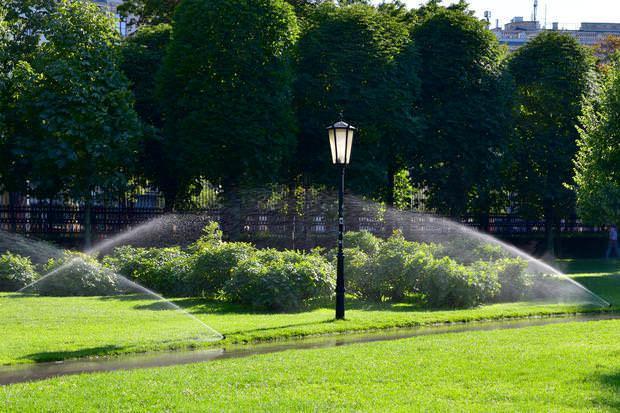 Prateria da giardino: meadow garden con irrigazione