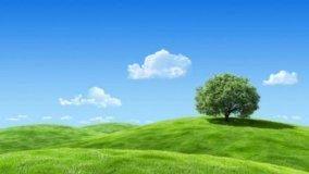 Certificazione Etica e Ambientale dei prodotti per l'edilizia
