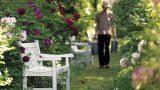Panca per il giardino