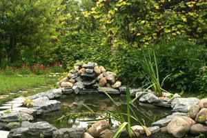 Specchio d'acqua di forma naturale