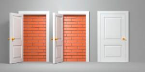 vani porta