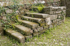 muro e scala esterna in pietra infestati da vegetazione