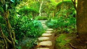 Camminata Giardino