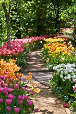 percorso giardino stretto