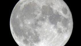 Le fasi lunari in giardino da Marzo a Maggio
