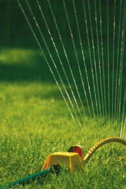 piccola irrigazione automatica