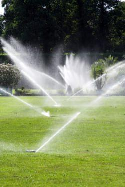 irrigazione automatica