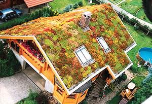 tetto con verde pensile