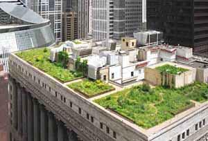 giardino sul tetto, verde pensile