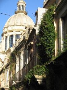 evidente stato di degrado di vecchi edifici da piante infestanti