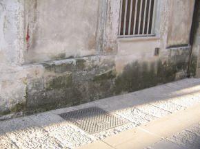 muschio esteso su zoccolo in pietra di un edificio