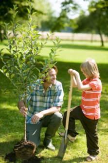 un grande giardino richiede grande impegno
