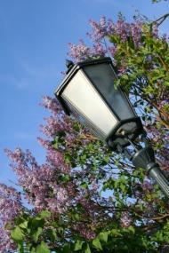 Lampione in ferro