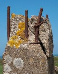 Sezione resistente di un pilastro in C.A.