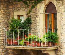 disposizione delle piante sul balcone