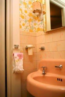 Pitture a confronto:un parato in vinile per bagno