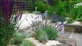 Giardini senza prato