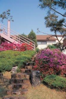 giardino soleggiato