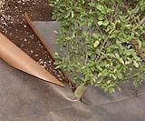 Tessuto non tessuto per giardinaggio e agricoltura Plantex Gold DuPont, in vendita su Bestprato.com