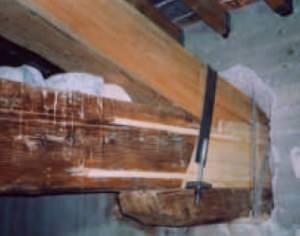 Legnodoc: ricostruzione testata di capriata
