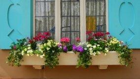 Responsabilità per la caduta delle fioriere dai balconi