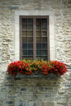 Codice civile vasi sui balconi