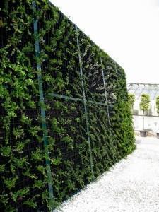 Sistemi fonoassorbenti vegetali - Barriere antirumore per terrazzi ...