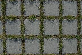 particolare di superficie permeabile con mattonelle in cemento e giunti aperti