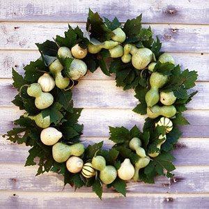 zucche ornamentali per la ghirlanda