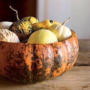 zucche ornamentali: gourds
