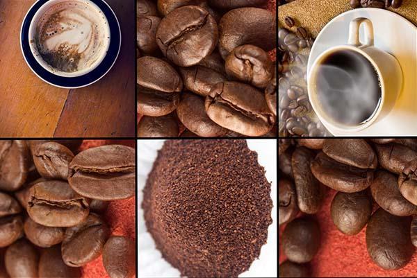 Caffè: in tazza, in chicci e tostato